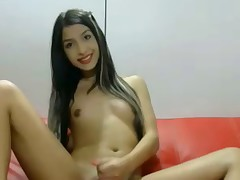 Shemale WebCams 211